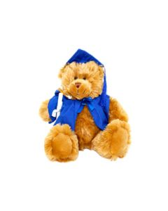 Masters Graduation Bear