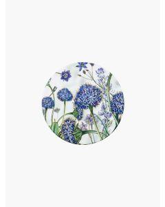 Brunonia Australis Ceramic Coaster